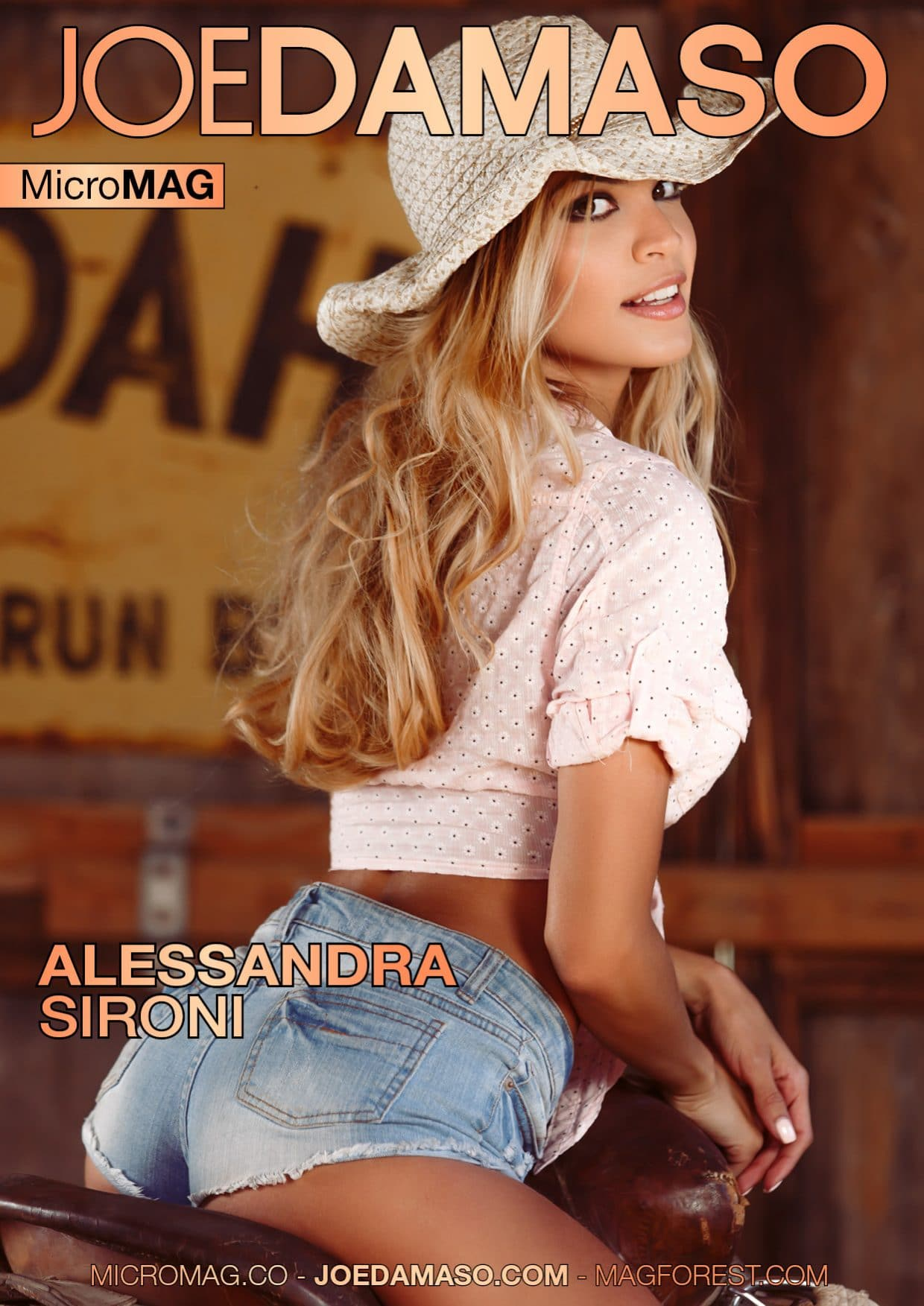 Joe Damaso Micromag – Alessandra Sironi