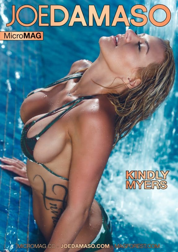 Joe Damaso MicroMag - Kindly Myers - Issue 2 10