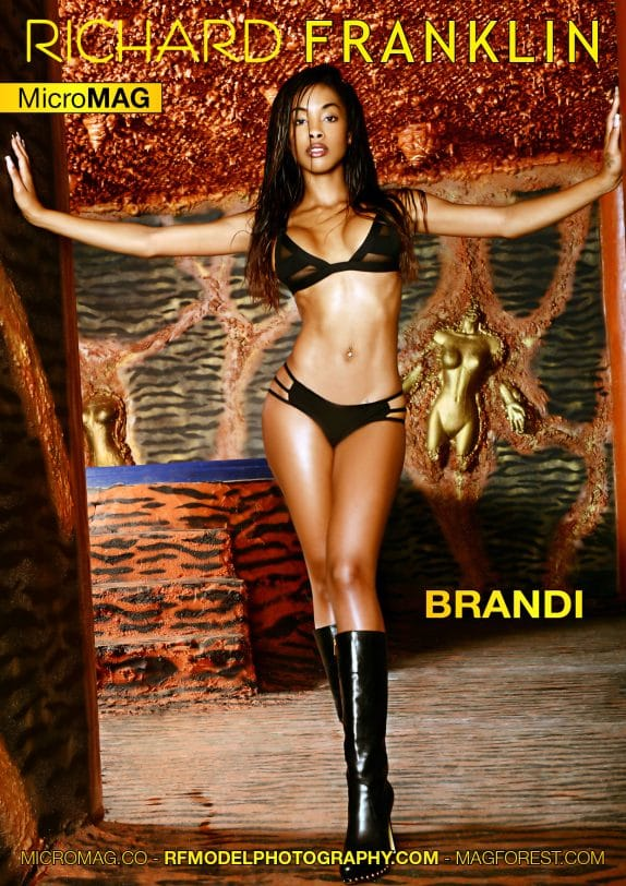 Richard Franklin Micromag – Brandi
