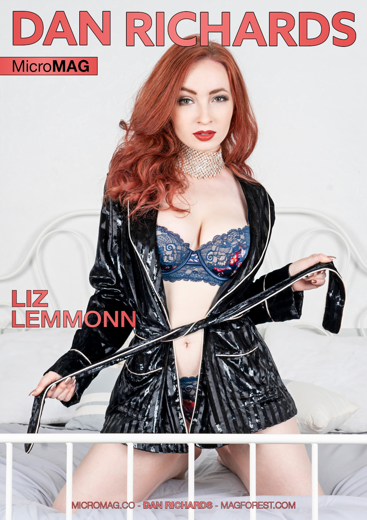 Dan Richards Micromag – Liz Lemmonn – Issue 3