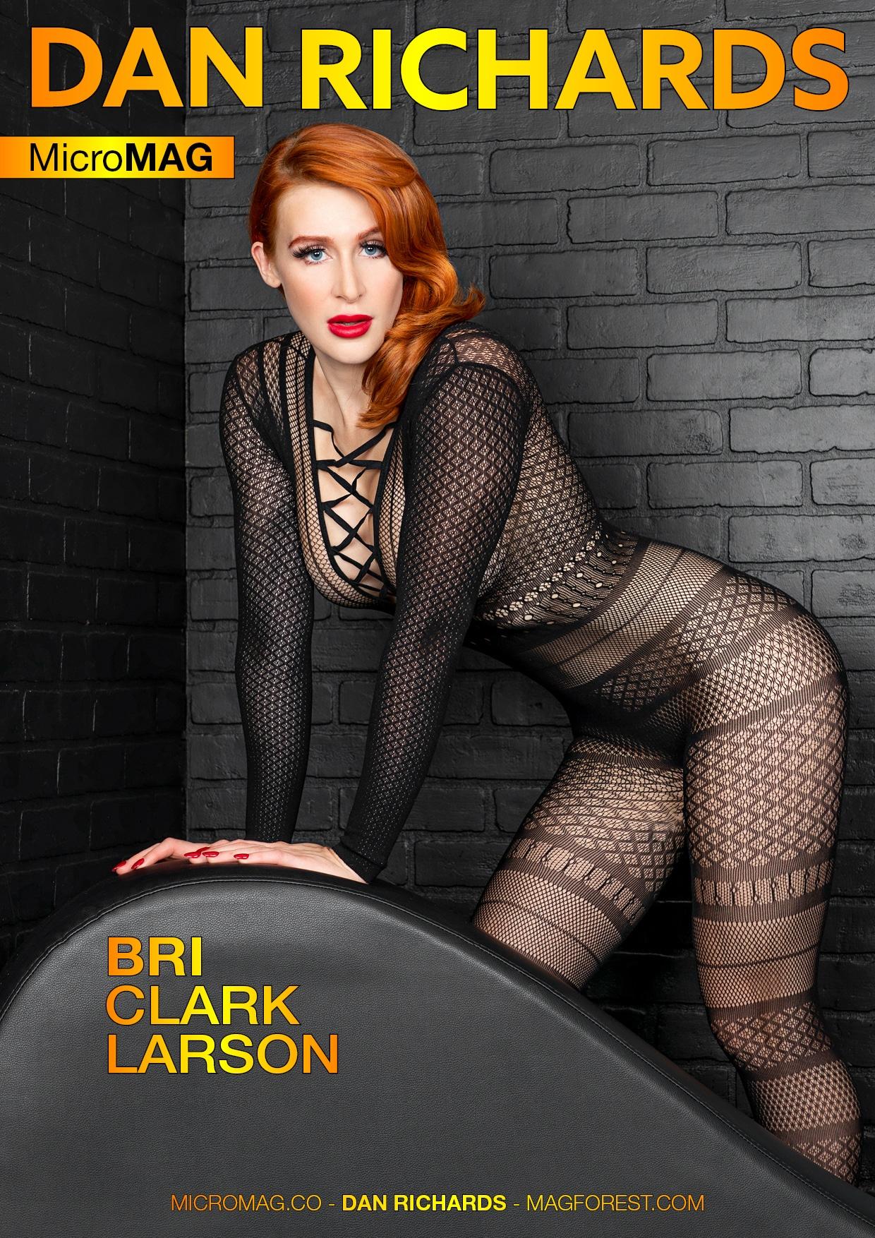 Dan Richards MicroMAG - Bri Clark Larson - Issue 4