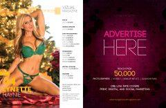 Vizual Magazine Vol 11 – December 2015