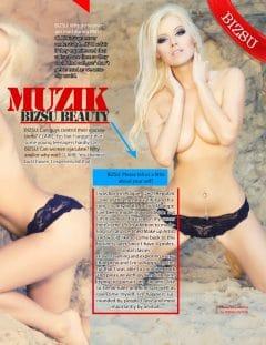 Bizsu Magazine – Christmas 2012